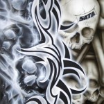 SATA Bones
